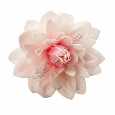 Óriás rózsaszín dália ostyavirág