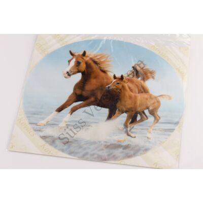 Tengerparton futó lovak tortaostya